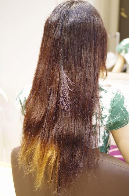 ハイダメージ毛の髪