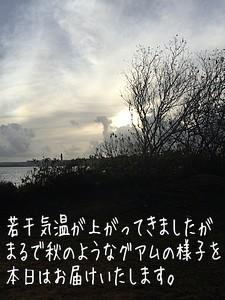 1503011.jpg