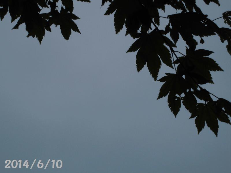 雨6月10日