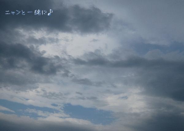 hantai052215.jpg