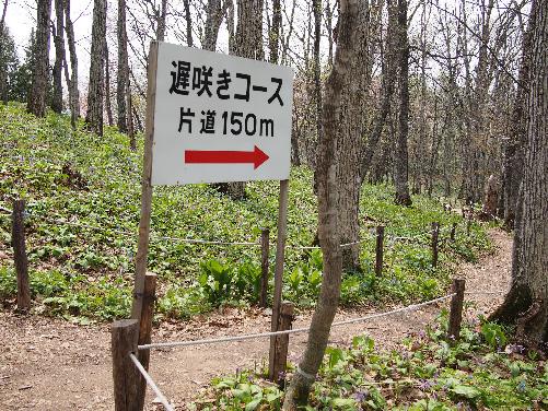 img2015-04-30-Otokoyama013.jpg