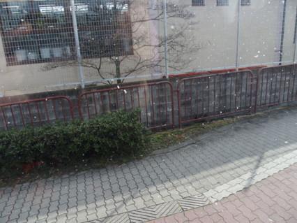 P3103240.jpg