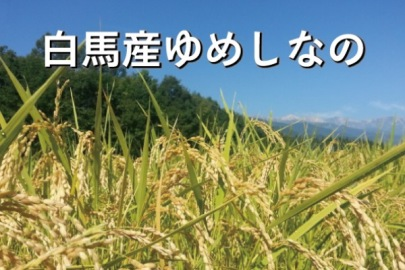 b-04_yumeshinano.jpg