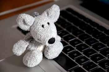mouse-500990_640.jpg