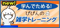 banner_pointquiz_new.jpg