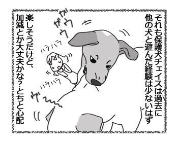 羊の国のラブラドール絵日記シニア!!「ガウガウ・バトル」2