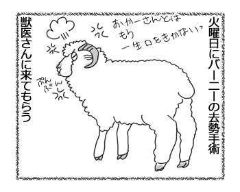 羊の国のラブラドール絵日記シニア!!「オチはやっぱり・・・?」2