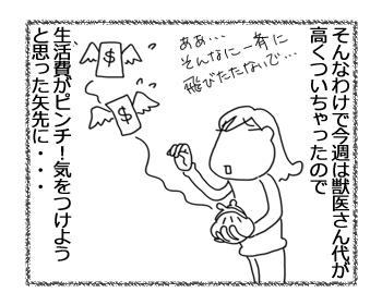 羊の国のラブラドール絵日記シニア!!「オチはやっぱり・・・?」3