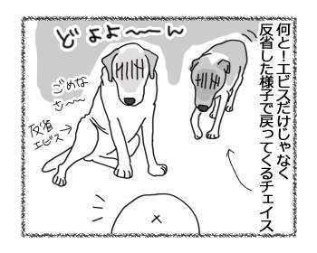 羊の国のラブラドール絵日記シニア!!「怒りながら感動」4
