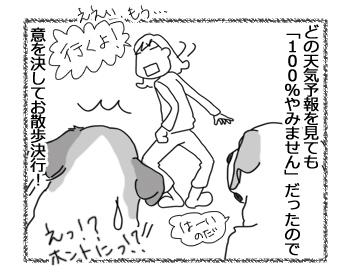 羊の国のラブラドール絵日記シニア!「タフなチェイス・・・?」2