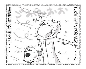 羊の国のラブラドール絵日記シニア!「タフなチェイス・・・?」3