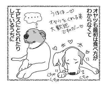 羊の国のラブラドール絵日記シニア!!「チェイスの目覚め」3