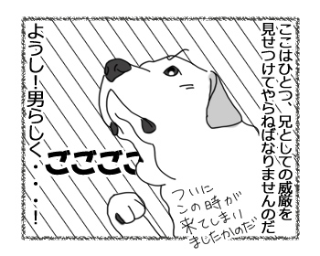 羊の国のラブラドール絵日記シニア!!「兄の威厳」3