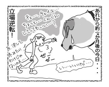 羊の国のラブラドール絵日記シニア!!「ゆうさんブート・キャンプ」5