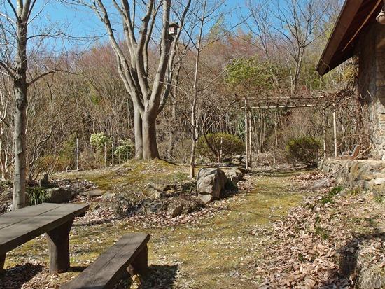 冬バージョンの庭