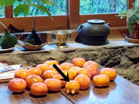 秋の柿の収穫