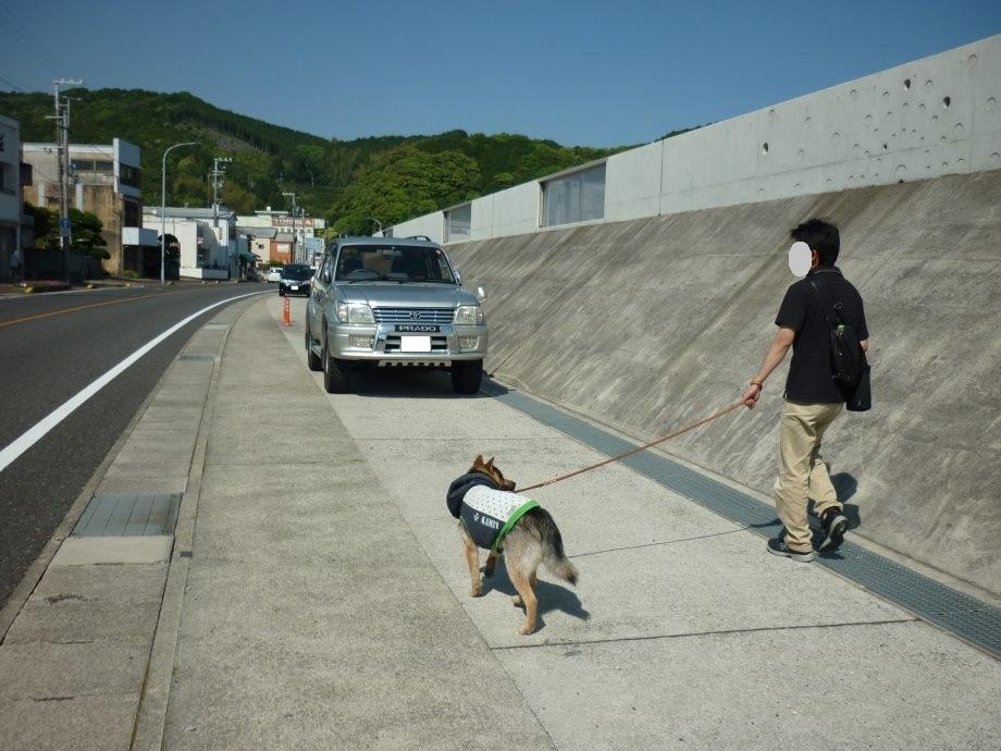 201505熊野5-08