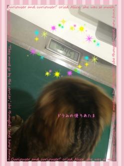 fc2blog_20150322004445b94.jpg