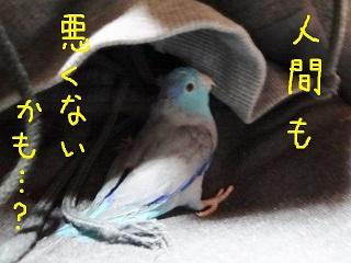 20150333101.jpg
