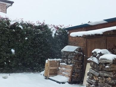 雪は降るし寒いし