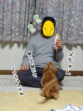 kinako1541.jpg