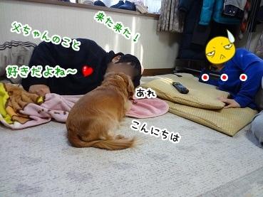 kinako1551.jpg