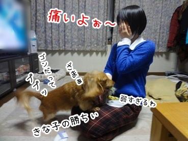 kinako1582.jpg