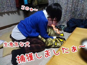 kinako1583.jpg
