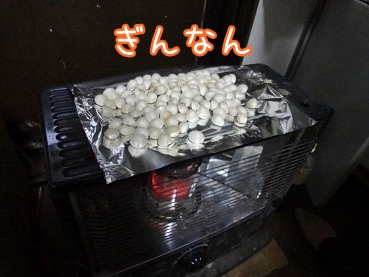 kinako1673.jpg