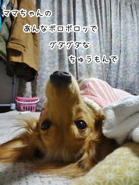 kinako1691.jpg