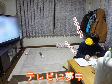 kinako1693.jpg