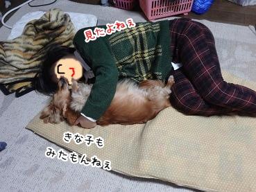 kinako1704.jpg