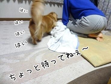 kinako1733.jpg