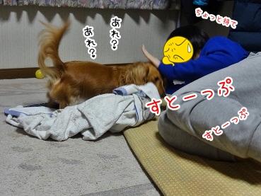 kinako1737.jpg