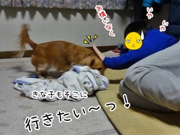 kinako1738.jpg