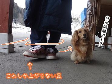 kinako2194.jpg