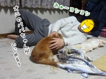 kinako2230.jpg