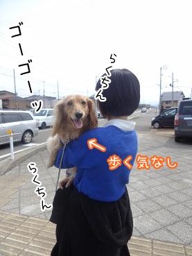 kinako2256.jpg