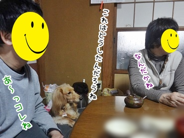 kinako2295.jpg