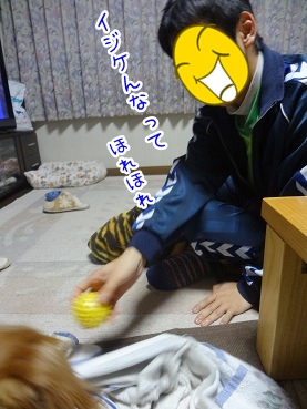 kinako2299.jpg