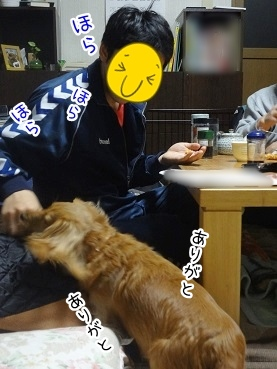 kinako2318.jpg