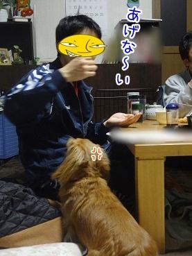 kinako2319.jpg