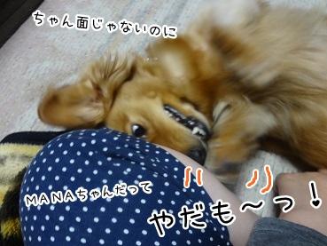 kinako2599.jpg