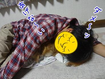 kinako2620.jpg