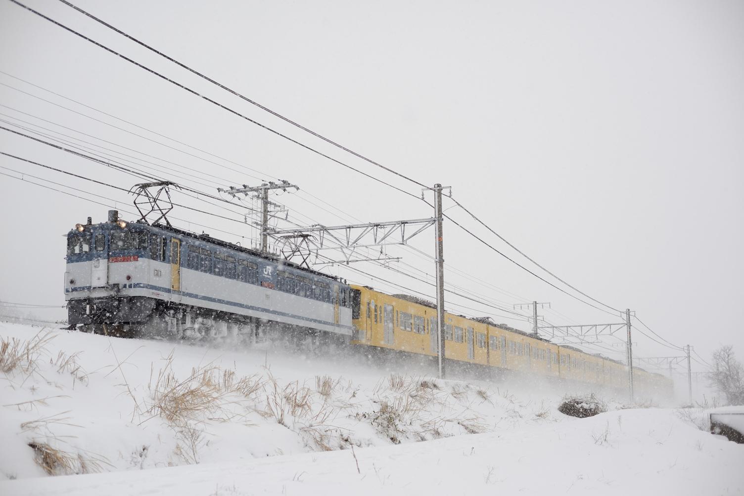 DSC_4521.jpg