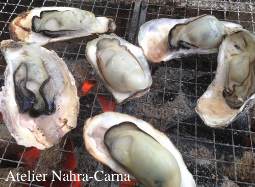 oyster_c.jpg