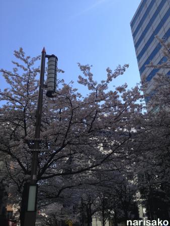 2015-03-31_1.jpg