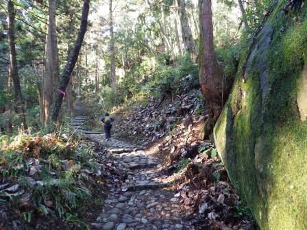 4 登山道IMGP1805