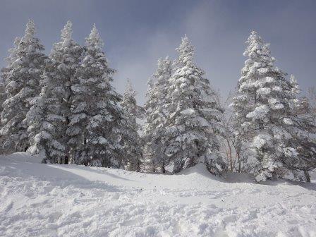 IMGP2005 山頂