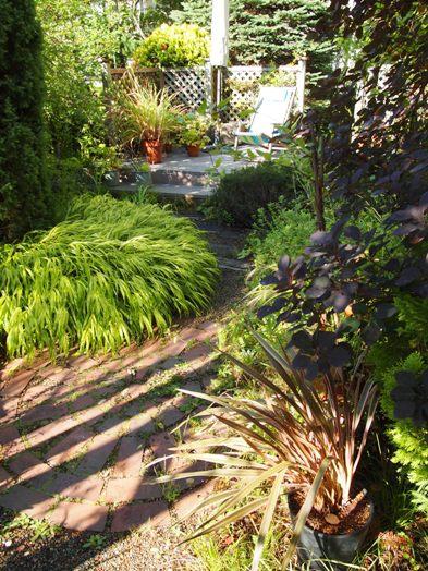 my-garden 043 (2)
